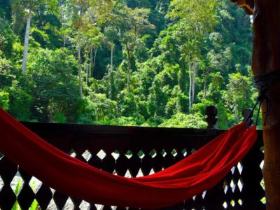 VIEW FROM JUNGLE VIEW SUITE AT ECOTRAVEL COTTAGES BUKIT LAWANG - SUMATRA ECOTRAVEL
