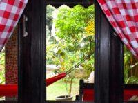 JUNGLE VIEW ROOM AT ECOTRAVEL COTTAGES BUKIT LAWANG - SUMATRA ECOTRAVEL