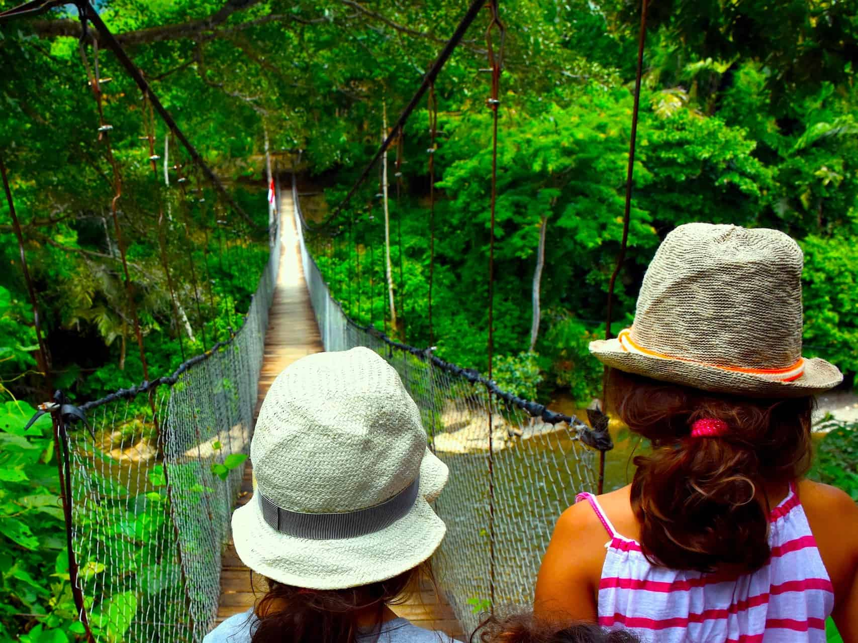 BUKIT LAWANG JUNGLE TREKKING FOR KIDS - SUMATRA HIGHLIGHT - SUMATRA ECO TOURS BY SUMATRA ECOTRAVEL