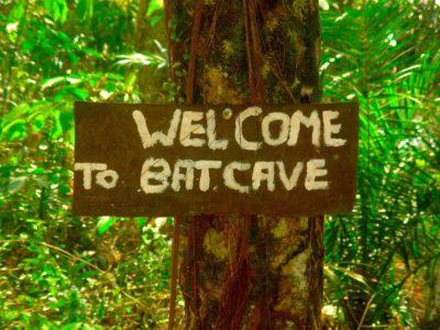 BAT CAVE - BUKIT LAWANG - SUMATRA ECOTRAVEL
