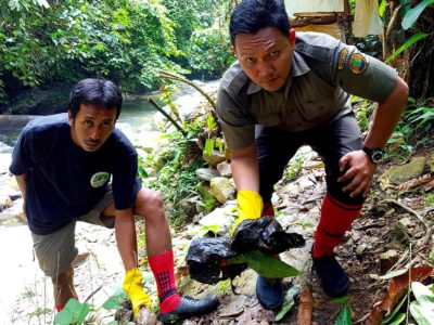 Keep The Jungle Green - Sumatra Eco Travel Bukit Lawang