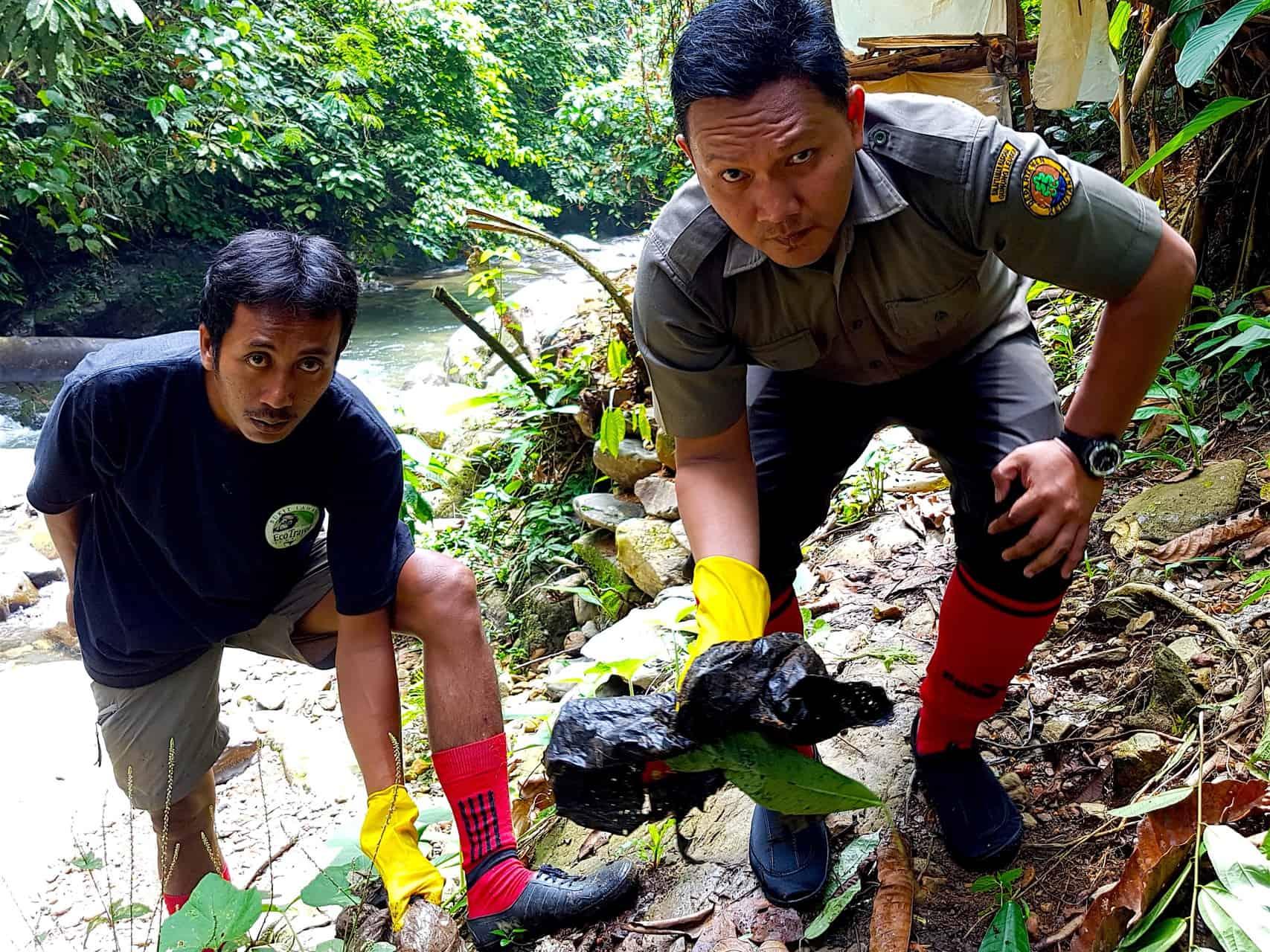 Keep The Jungle Green - Sumatra Eco Travel Bukit Lawang