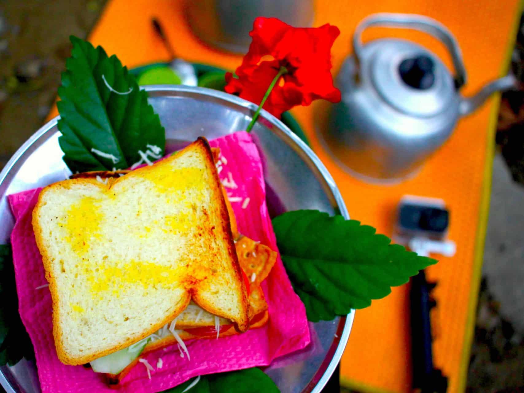 JUNGLE SANDWICH - ORANGUTAN TREKKING - 3-DAY TREK BY SUMATRA ECOTRAVEL