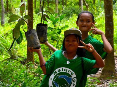 Trees For The Future - Sumatra EcoTravel Bukit Lawang