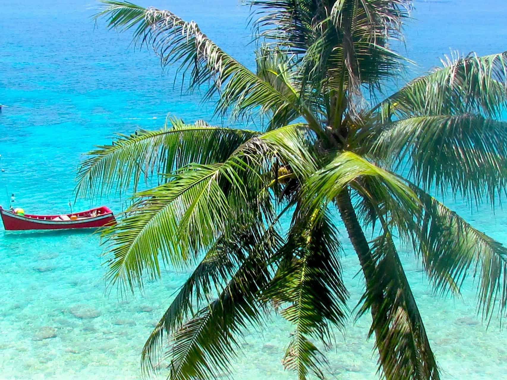PULAU WEH - JUNGLE MEETS BEACH - SUMATRA ECOTRAVEL