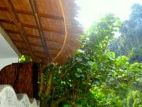 Hangout@EcoTravel Bukit Lawang